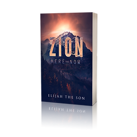 ZION HERE AND NOW COVER 3D Reflection.pn