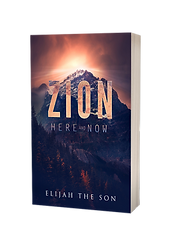 ZION HERE AND NOW COVER 3D.png