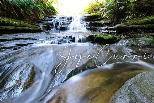 Trip Through Nature