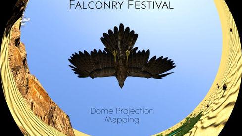 King Abdul Aziz Falconry Festival