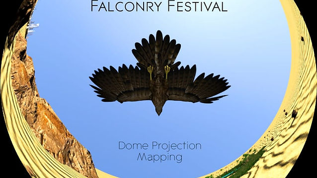 King Abdul Aziz Falconry Festival