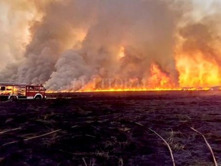 La Corte pone un freno a los incendios en el Delta.