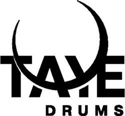 taye-logo.jpg