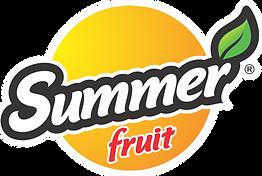 summer fruit suco guarapari