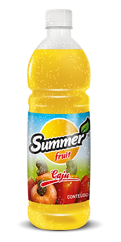 SUCO 1 LITRO CAJU SUMMER FRUIT GUARAPARI