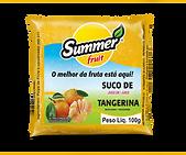 Polpa de Fruta Tangerina Summer Fruit Guarapari