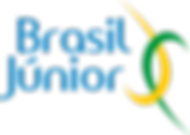 Logo Brasil Junior