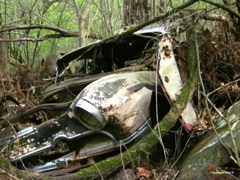 Anthropology Students Tired of Being Asked How Those Cars Ended Up in The Nature Preserve
