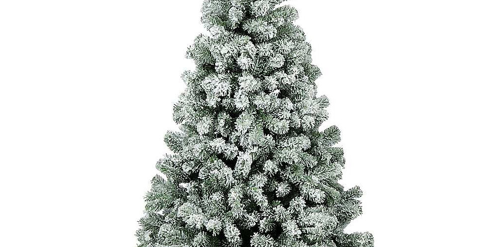 Snow Green Pine