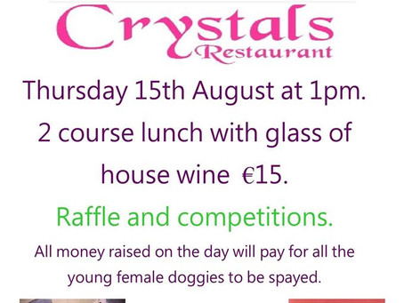 Ladies Lunch, 15th August at Crystals.
