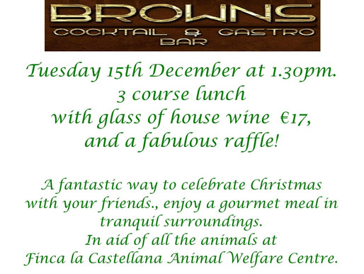 Luxury lunch at Browns 15th Dec