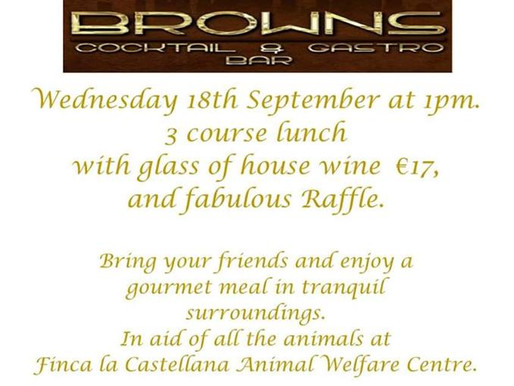Luxurious Ladies Lunch, September 18th.