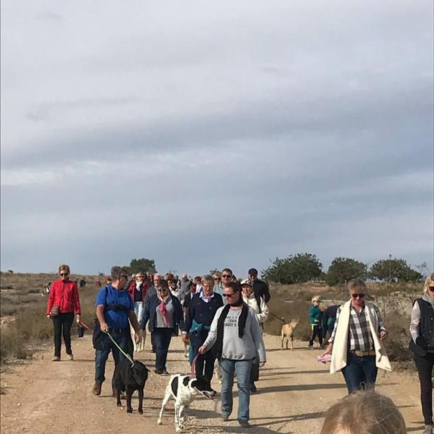 walk28
