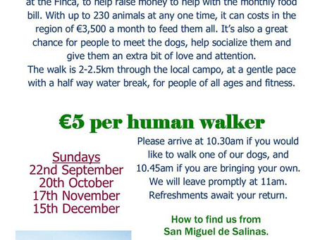 Charity Dog Walks return this month!!
