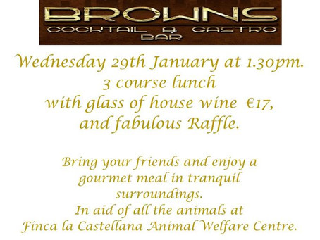 Ladies Lunch at Browns, Wednesday 29th January.