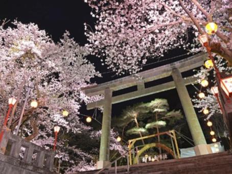 栃木県日光、4月〜5月上旬の桜スポット