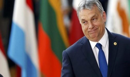 Macaristan Şeffaflık Raporu