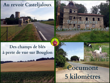 #12 Patrick de Casteljaloux à Cocumont …autour du Lot et Garonne