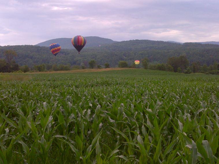 VT Stowe balloons
