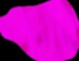 pink_blob2.png