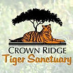 Crown Ridge Tigers