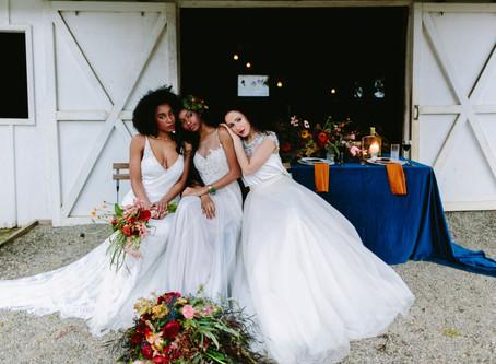 Winter Bridal Editorial with ALPACAS