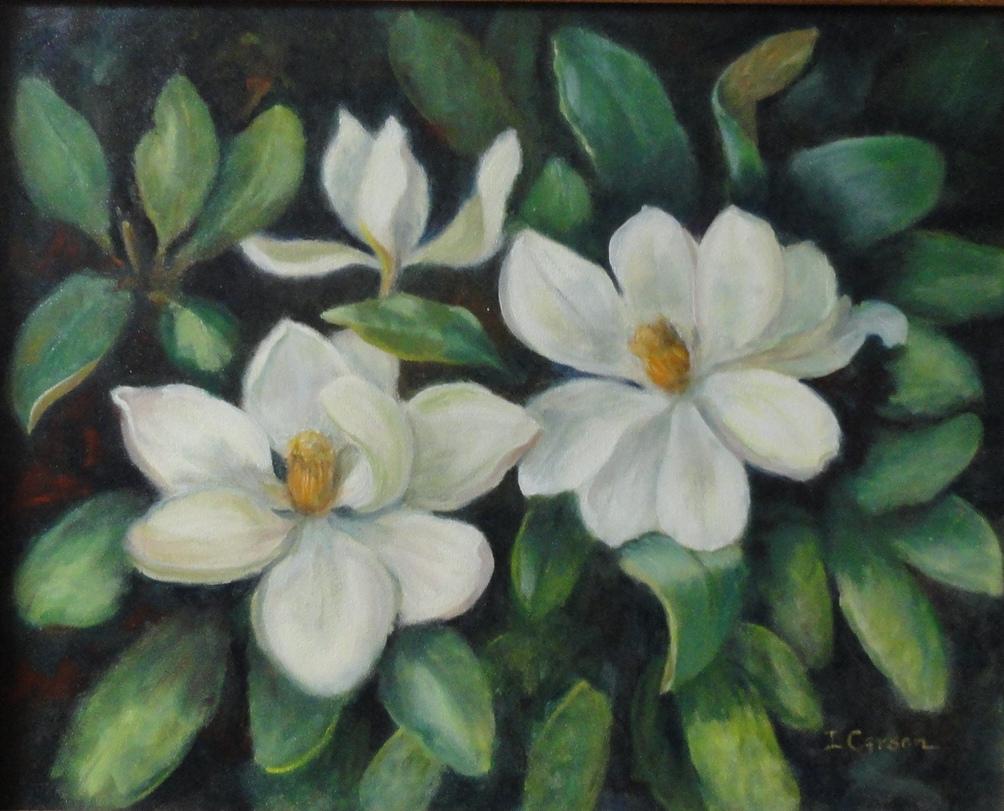 Three Magnolias II