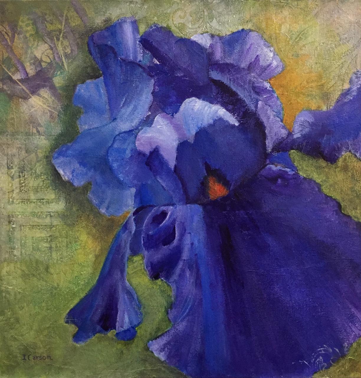 Dancing Iris 2 1824