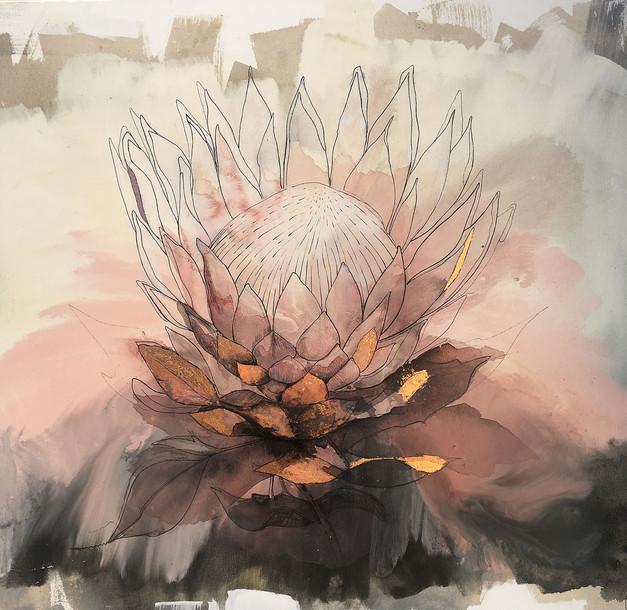 Pink protea #2