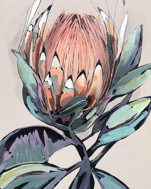 peach protea.jpg