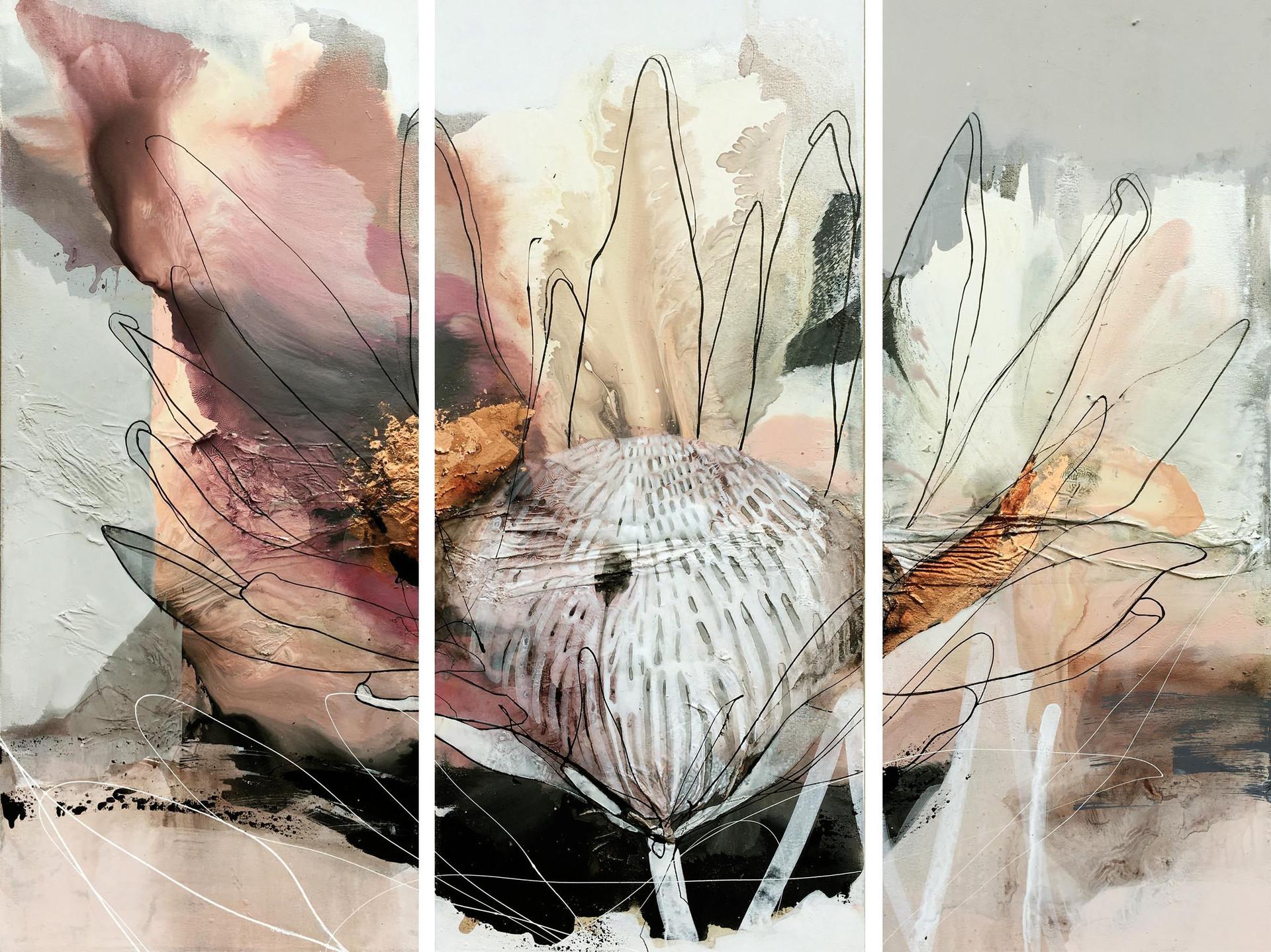 Blush and copper protea tiptych