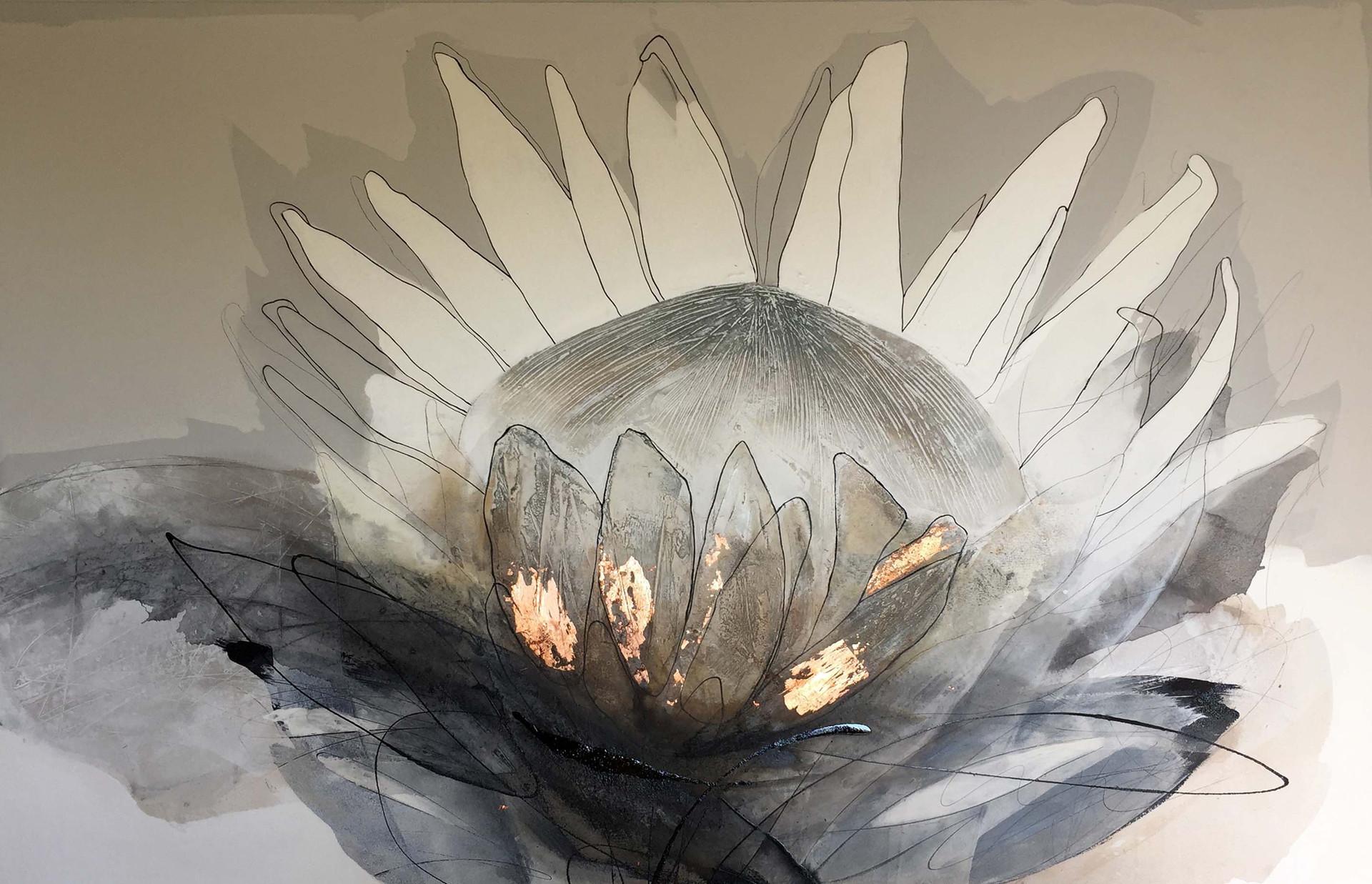 Black and copper protea #1
