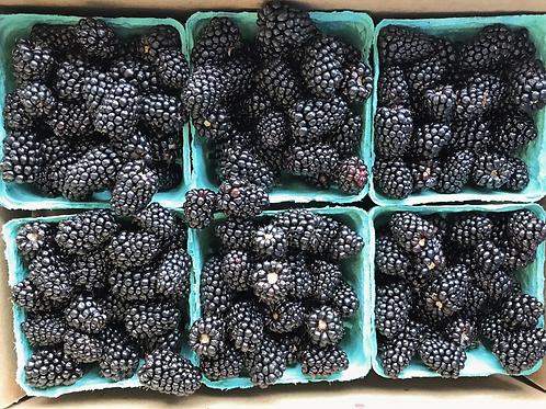 Blackberries, Organic