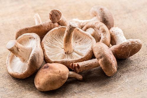 Shiitake Mushrooms, Organic
