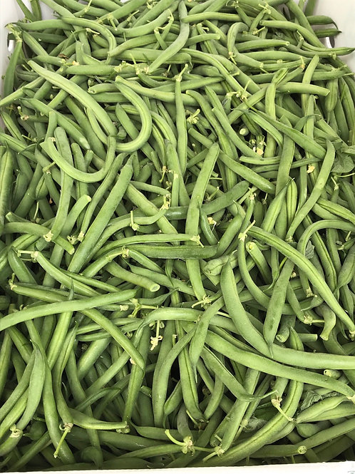 Brentwood Blue Lake Green Beans, Organic