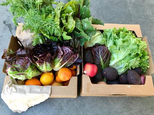 Large Produce Box