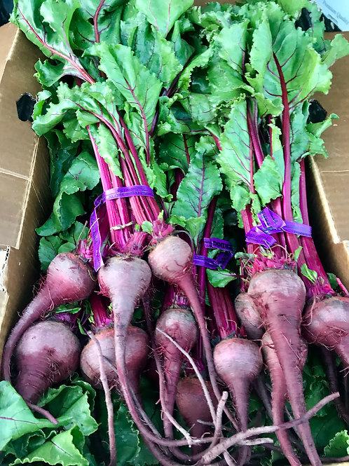 Purple Beets, Organic