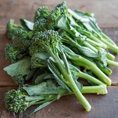 Broccoli Di Ciccio, Organic