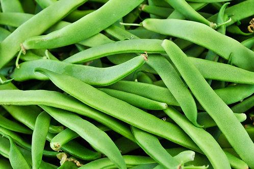 Romano Beans, Organic