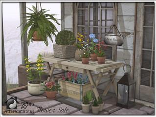 Flower Sale