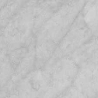 Carrera White