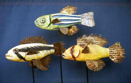 Fish Group