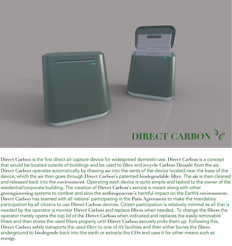 Direct Carbon Page 1 Website.jpg