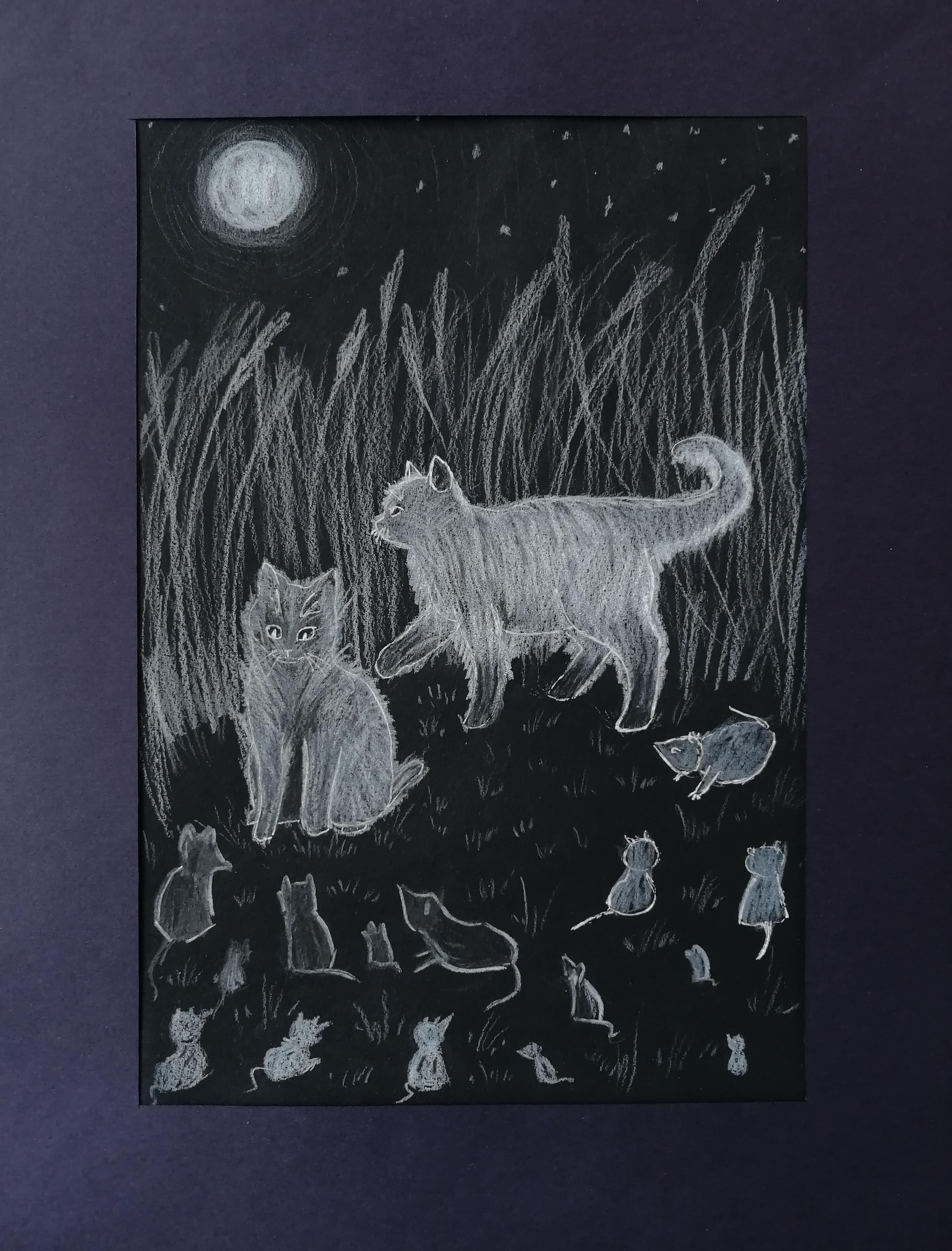 №534_Кошки