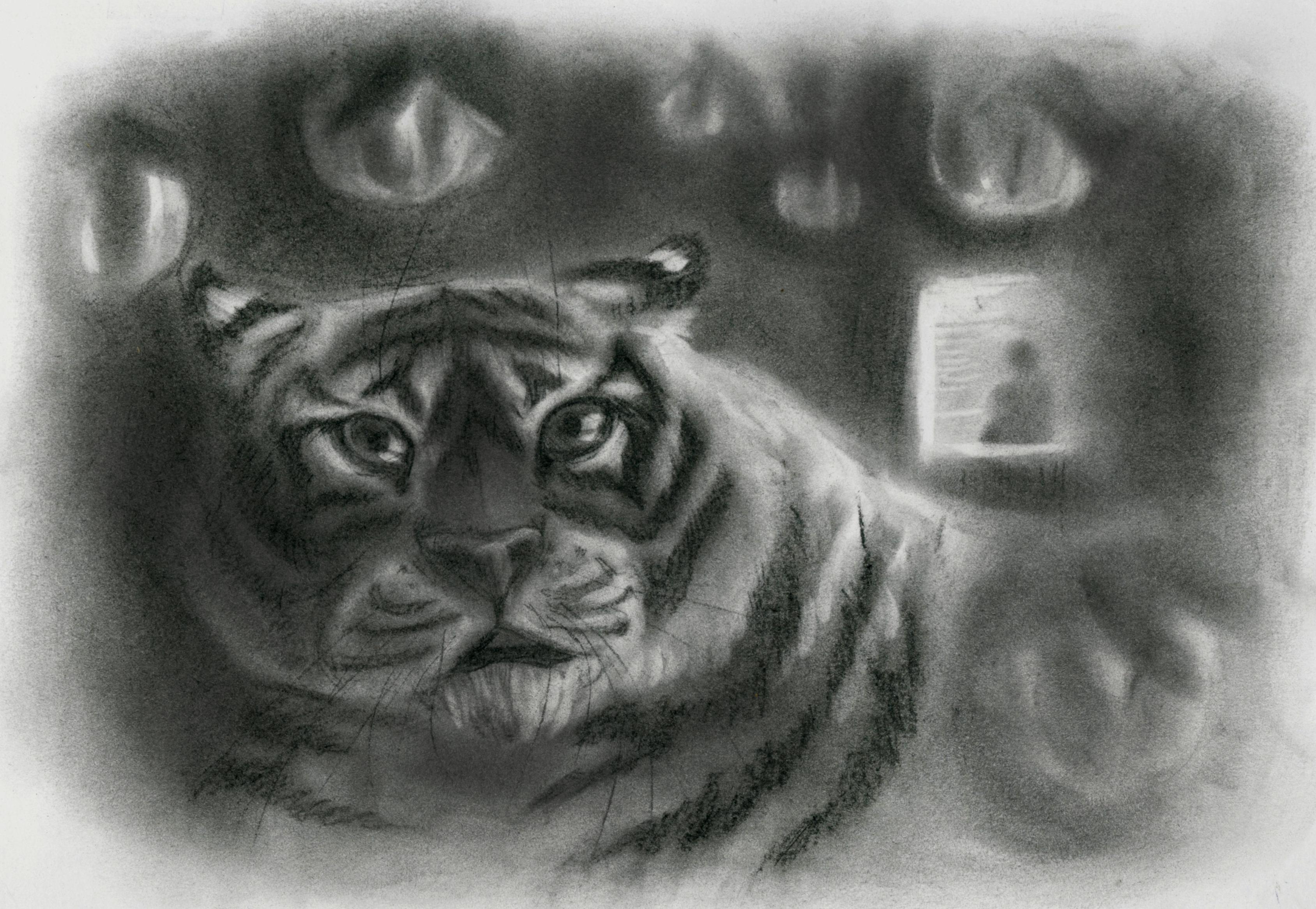 №147_Как тигр хурмы испугался