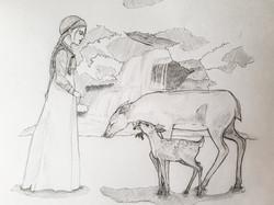 №10_Как девушка оленя спасла