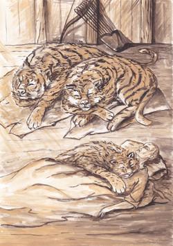 №39_Кошки