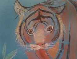 №83_Как тигр хурмы испугался