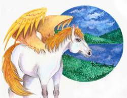№306_Крылатый конь