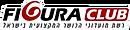לוגו דלת פלדה כניסה.png